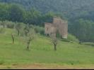 Id:117, Vendita casale con terreno ad Amelia, Terni (Id:117)