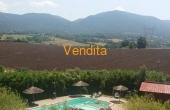 153, Villa, Porzione di Bifamiliare, con piscina,depandance, ampio giardino